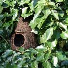 Ptačí polobudka Brushwood