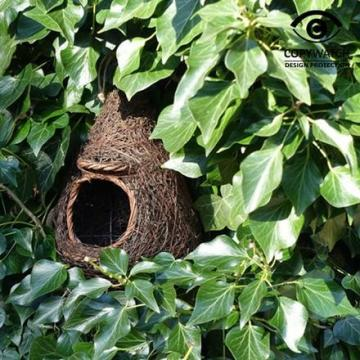 ptaci-polobudka-brushwood_1046_894.jpg